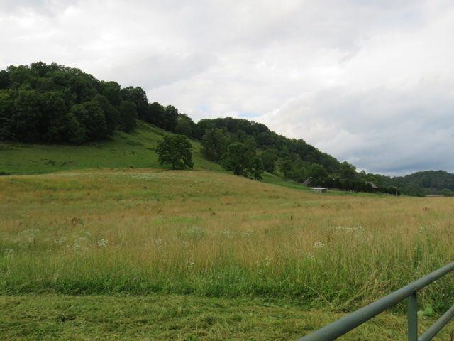 0 Rich Valley Road, Abingdon, VA 24210 (MLS #70132) :: Highlands Realty, Inc.
