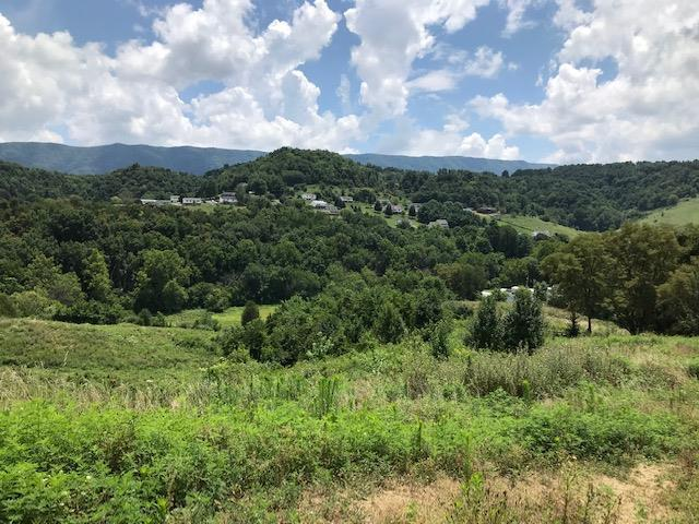 TBD Mays St, Lebanon, VA 24266 (MLS #70592) :: Highlands Realty, Inc.