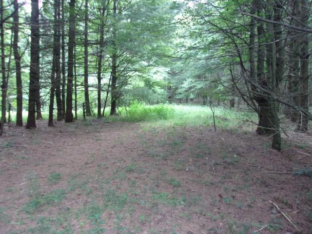 TBD Old Barrett Road, Ennice, NC 28623 (MLS #70850) :: Highlands Realty, Inc.