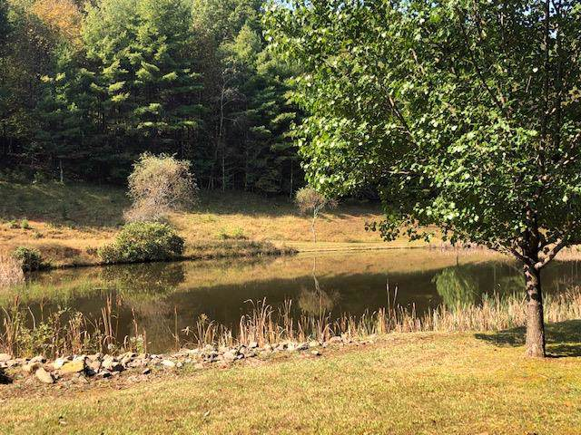 TBD Cove Ln, Woodlawn, VA 24381 (MLS #71591) :: Highlands Realty, Inc.