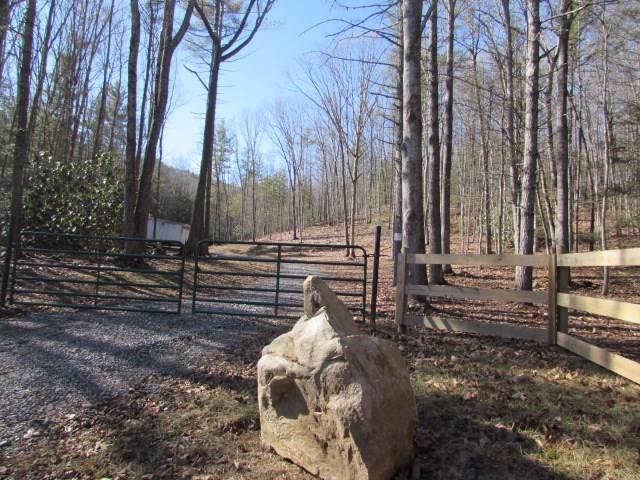 TBD Mule Hell Rd, Wytheville, VA 24382 (MLS #71729) :: Highlands Realty, Inc.