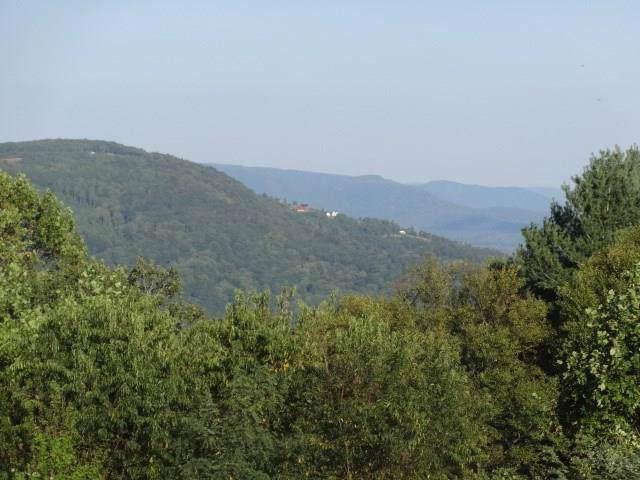 163 Panorama Dr, Fancy Gap, VA 24328 (MLS #72134) :: Highlands Realty, Inc.