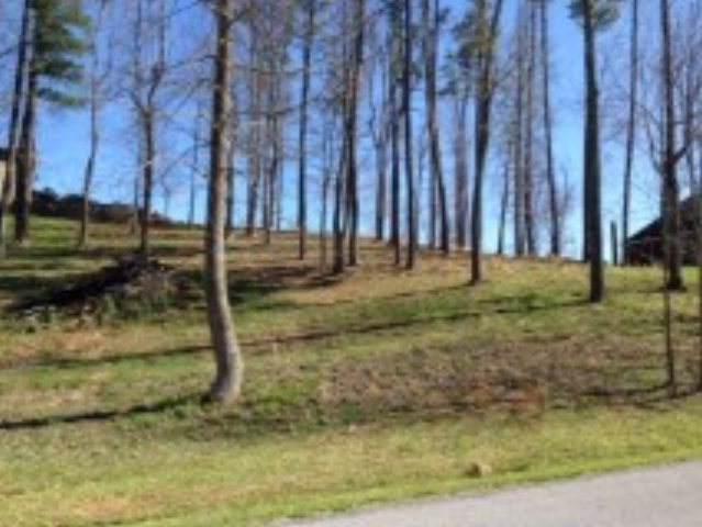 LOT 18 Heron Circle, Abingdon, VA 24210 (MLS #72174) :: Highlands Realty, Inc.