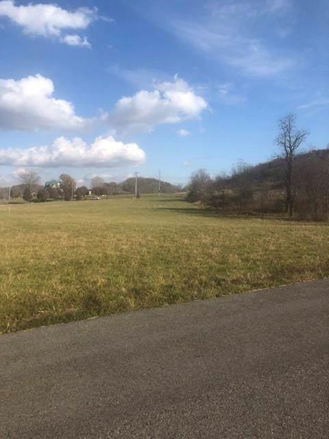 N/A Reedy Creek Road, Bristol, VA 24201 (MLS #72283) :: Highlands Realty, Inc.
