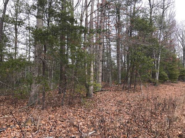 10.49 ac Heather Lane, Max Meadows, VA 24360 (MLS #72459) :: Highlands Realty, Inc.