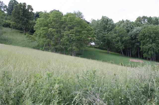 TRACT 49 Deer View Road, Lebanon, VA 24266 (MLS #72471) :: Highlands Realty, Inc.
