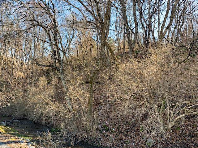 TBD Surface Drive, Tazewell, VA 24651 (MLS #72535) :: Highlands Realty, Inc.