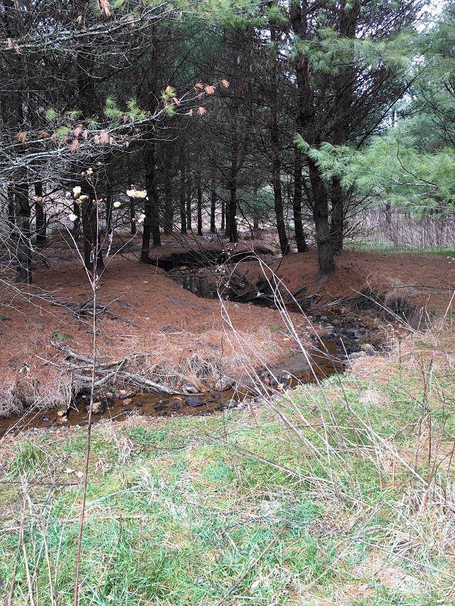 TBD Happy Hollow Rd, Galax, VA 24333 (MLS #72648) :: Highlands Realty, Inc.