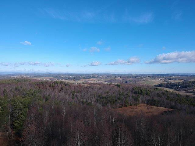 TBD Elk Horn Rd, Woodlawn, VA 24381 (MLS #72666) :: Highlands Realty, Inc.