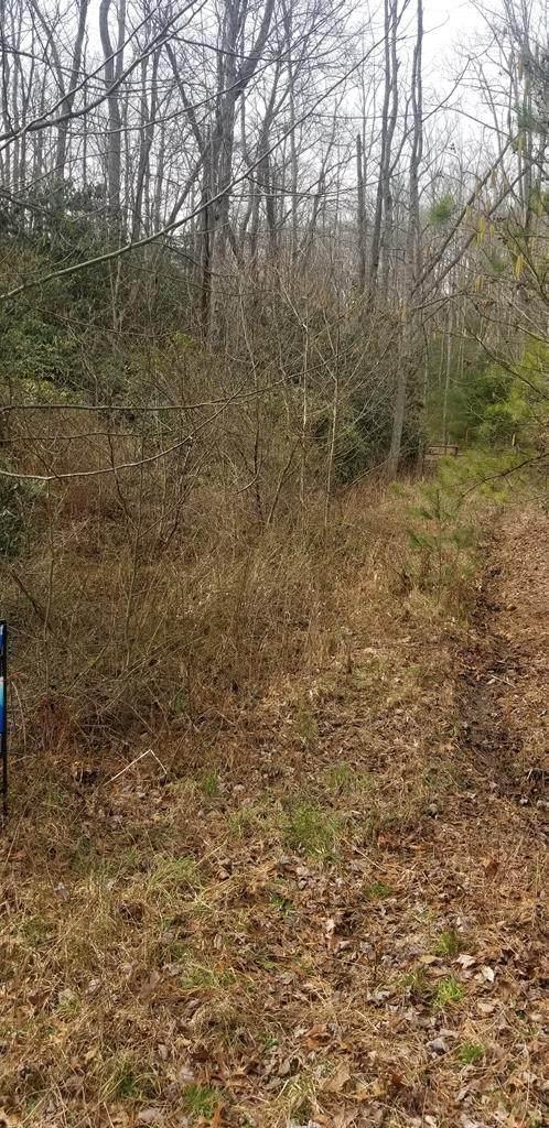 0 Little Dan River Rd, Claudville, VA 24171 (MLS #72916) :: Highlands Realty, Inc.