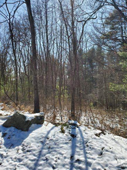 TBD Old Hollow Trail, Fancy Gap, VA 24328 (MLS #73097) :: Highlands Realty, Inc.