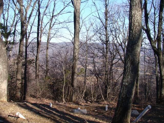 TBD Flint Ridge, Fancy Gap, VA 24328 (MLS #73297) :: Highlands Realty, Inc.