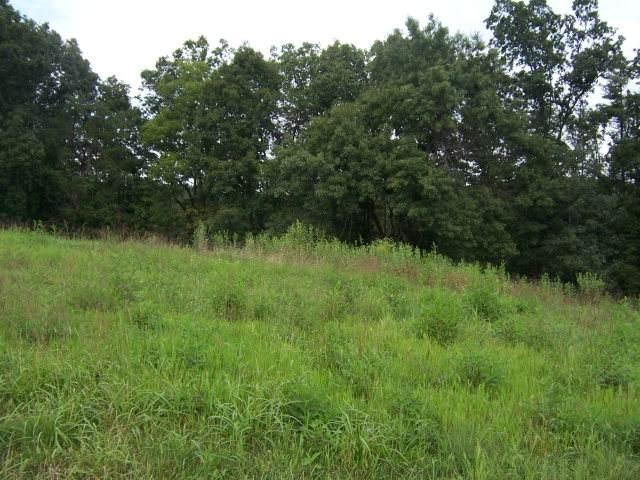 0 Lake Pointe Drive, Lot 38, Abingdon, VA 24211 (MLS #73403) :: Highlands Realty, Inc.
