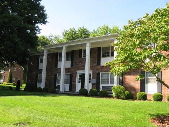 250 Jefferson Circle #13, Abingdon, VA 24210 (MLS #73706) :: Highlands Realty, Inc.
