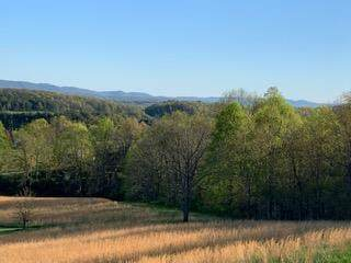 TBD Big Valley Dr., Draper, VA 24324 (MLS #73757) :: Highlands Realty, Inc.
