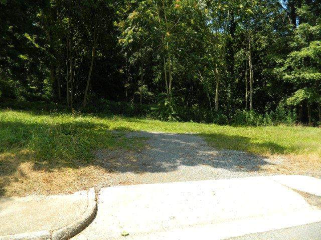 150 Cemetery St, Marion, VA 24354 (MLS #73979) :: Highlands Realty, Inc.
