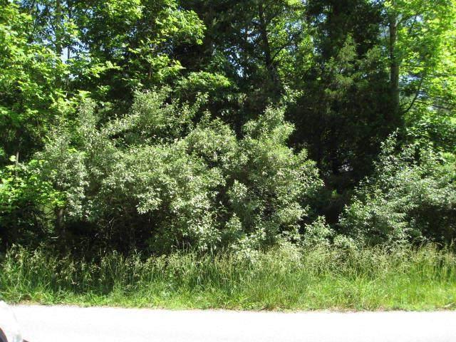 TBD Preston Place, Abingdon, VA 24211 (MLS #74457) :: Highlands Realty, Inc.
