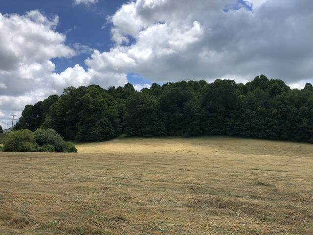 TBD Hillman Highway, Abingdon, VA 24210 (MLS #74495) :: Highlands Realty, Inc.