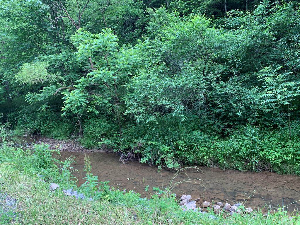 TBD Carlock Creek Rd - Photo 1