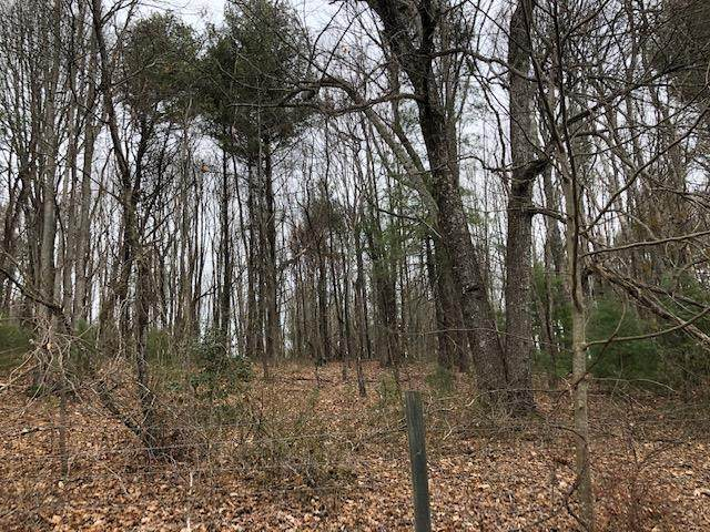 TBD Klondike Rd, Galax, VA 24333 (MLS #74645) :: Highlands Realty, Inc.