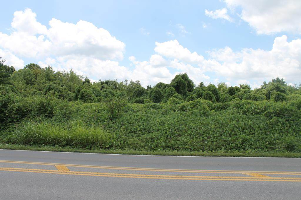 TRACT #6 Wyndale Road - Photo 1