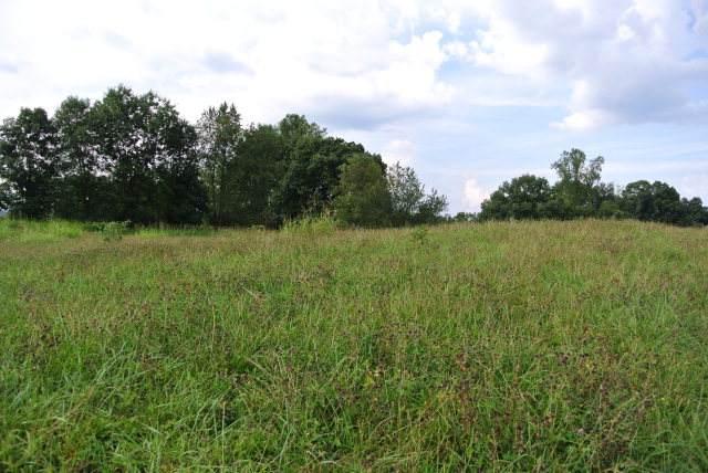 Lot 21 Homestead Way, Abingdon, VA 24210 (MLS #75377) :: Highlands Realty, Inc.