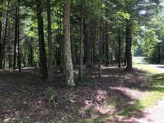 TBD Cove Ln, Woodlawn, VA 24381 (MLS #75466) :: Highlands Realty, Inc.