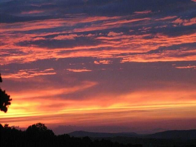 20 (TBD) Sky Top Lane, Woodlawn, VA 24381 (MLS #75543) :: Highlands Realty, Inc.