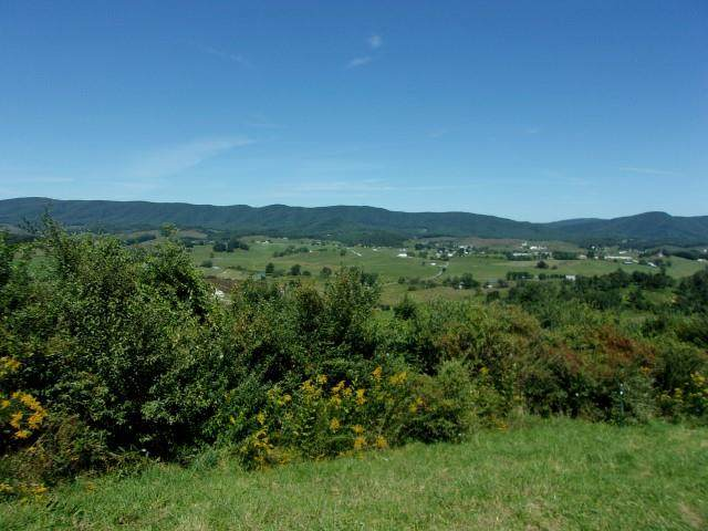 TBD 603 Stones Chapel, Elk Creek, VA 24326 (MLS #75681) :: Highlands Realty, Inc.