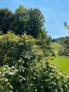 TBA Glenview Drive, Abingdon, VA 24211 (MLS #75687) :: Highlands Realty, Inc.