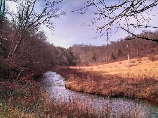 TBD Poplar Hill Rd, Dugspur, VA 24325 (MLS #75734) :: Highlands Realty, Inc.