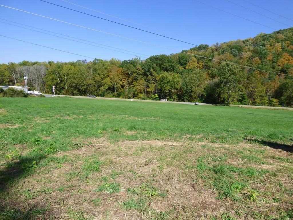 tbd Fort Chiswell Road - Photo 1