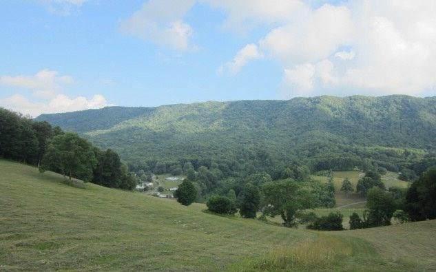 4879 Wardell Rd, Pounding Mill, VA 24637 (MLS #76075) :: Highlands Realty, Inc.