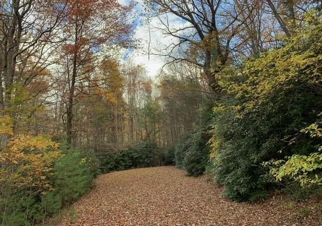 23-25 Otter Creek Trail, Fancy Gap, VA 24328 (MLS #76153) :: Highlands Realty, Inc.