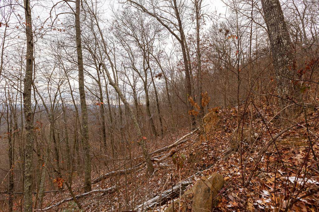 18.72 AC North Fork River Rd - Photo 1
