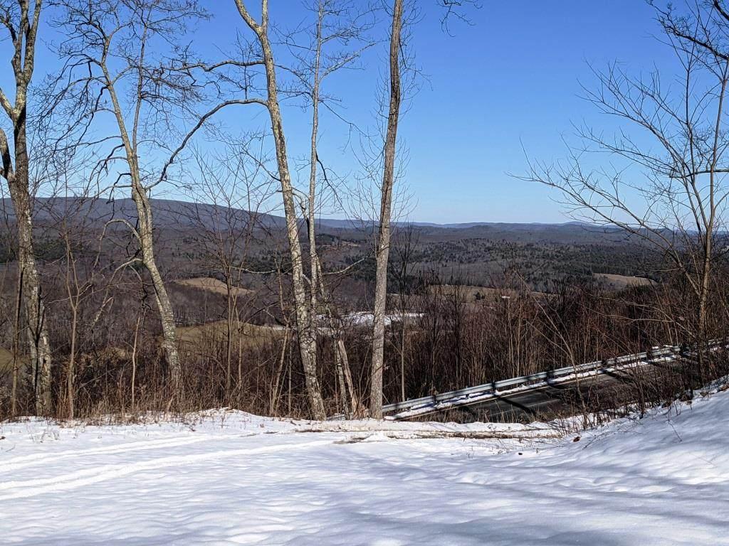 79 acres Old Mountain Rd - Photo 1