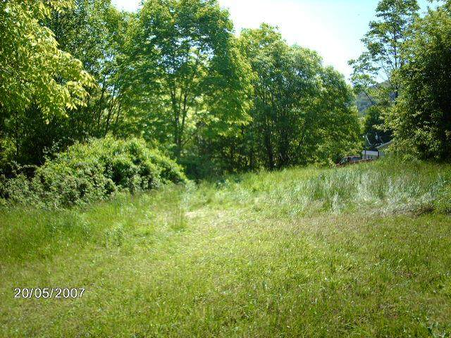 NONE Gratton Rd, Tazewell, VA 24651 (MLS #76814) :: Highlands Realty, Inc.