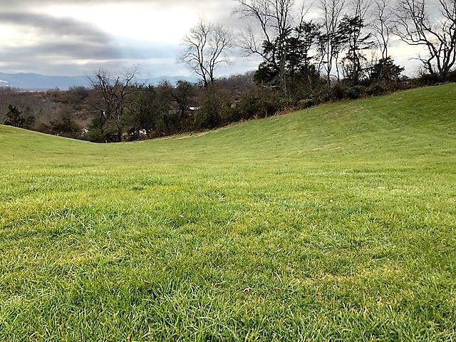 TBD Carterville Heights Rd., Max Meadows, VA 24360 (MLS #77089) :: Highlands Realty, Inc.