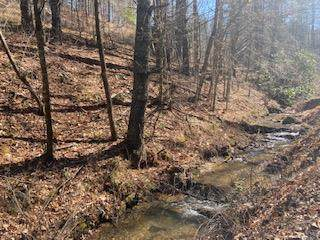 TBD Lincoln Road, Galax, VA 24333 (MLS #77323) :: Highlands Realty, Inc.