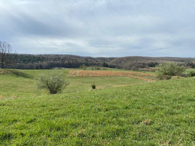 25 acres Peppers Ferry Rd, Max Meadows, VA 24360 (MLS #77868) :: Highlands Realty, Inc.