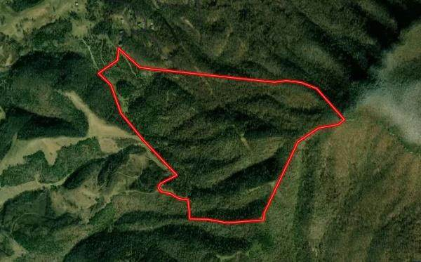0 Us Hwy 19, Lebanon, VA 24266 (MLS #77987) :: Highlands Realty, Inc.