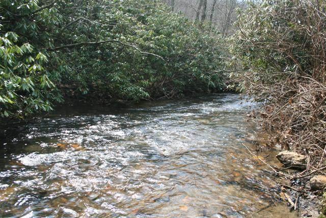 0 Jeb Stuart Hwy, Meadows of Dan, VA 24120 (MLS #78248) :: Highlands Realty, Inc.