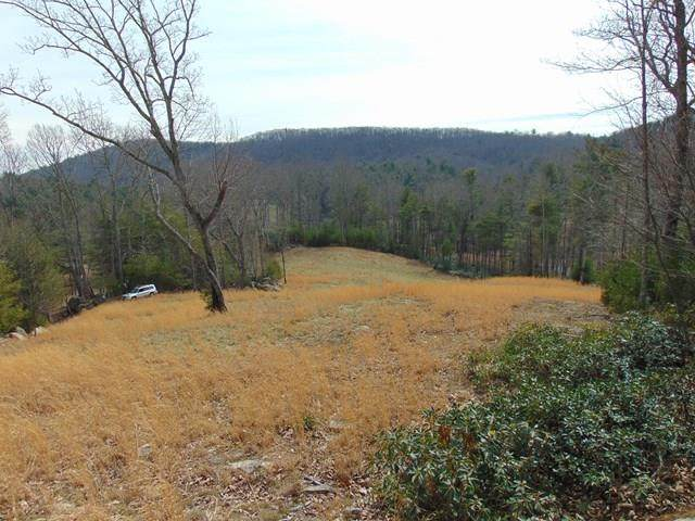 tbd Park Place Drive, Independence, VA 24348 (MLS #79089) :: Highlands Realty, Inc.