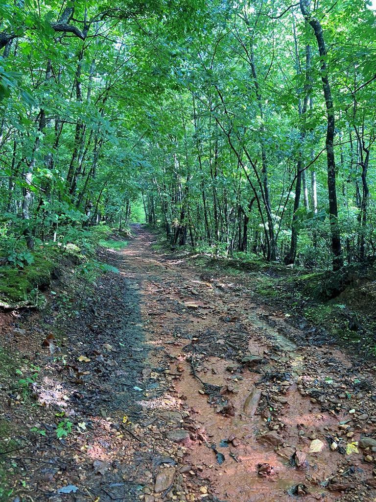 TBD Peaceful Ridge Ln - Photo 1