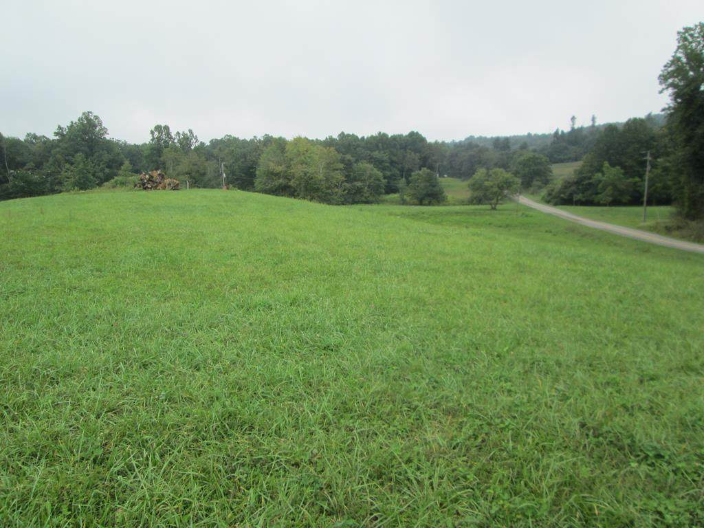 TBD Terry's Mill Rd - Photo 1