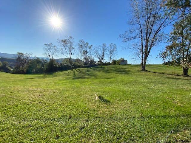 1 ac Carterville Heights, Wytheville, VA 24382 (MLS #80522) :: Southfork Realty
