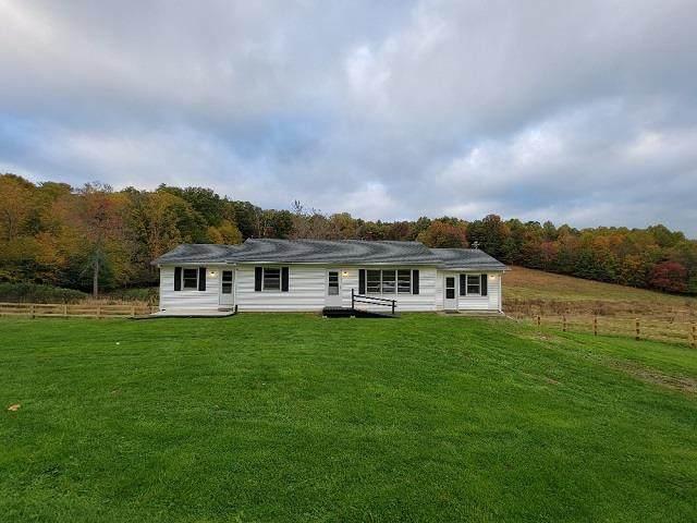 2046 Joy Ranch Rd, Woodlawn, VA 24381 (MLS #80555) :: Southfork Realty