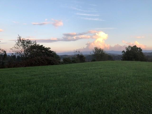TBD Riley Drive, Chilhowie, VA 24319 (MLS #66952) :: Highlands Realty, Inc.