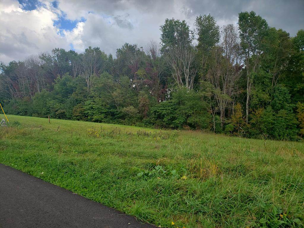TBD Scenic Elk Garden Drive - Photo 1
