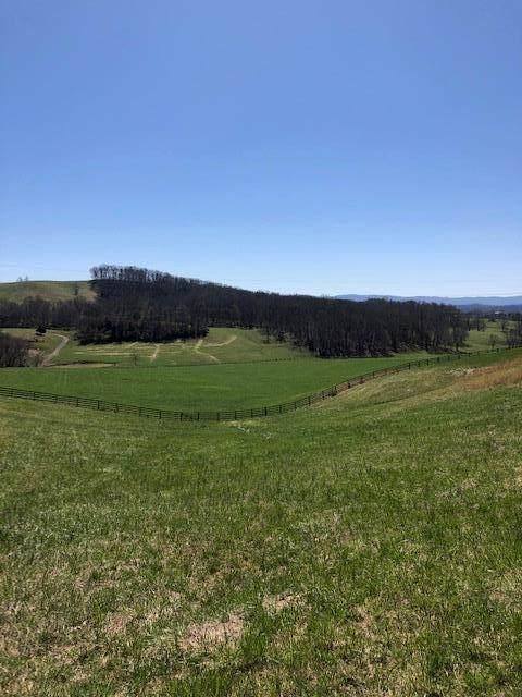 TBD Quail Ridge Way - Photo 1